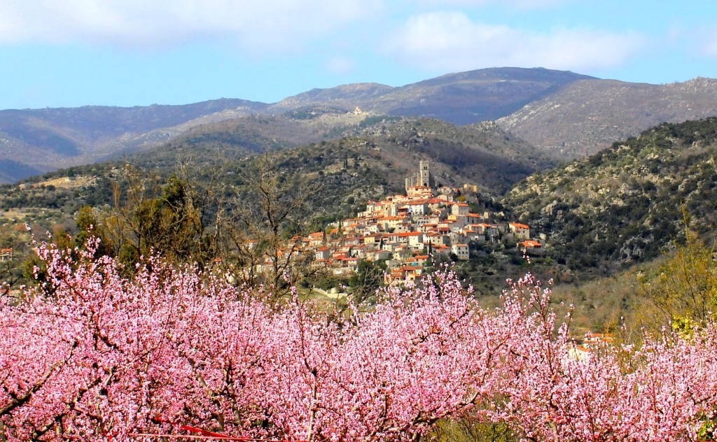 pink valley Pyrenees spring time