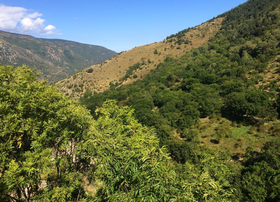 Sources chaudes dans la montagne - Pyrénées Orientales