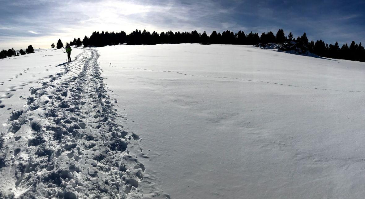 Cime de Pomaroles - Pla Segala - Mantet