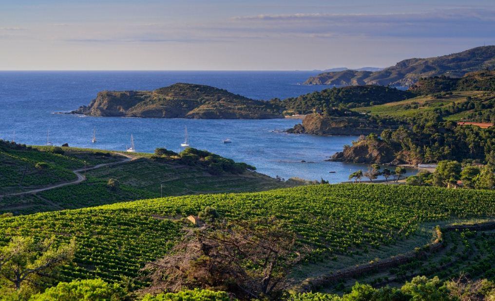 criques naturelles paulilles port vendres