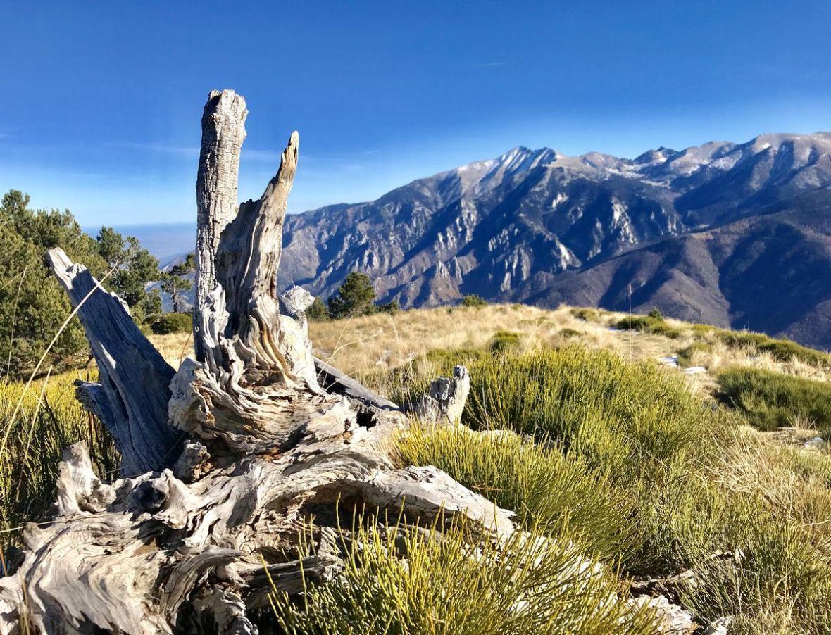 Canigou et Parc Naturel Regional des Pyrenees Catalanes