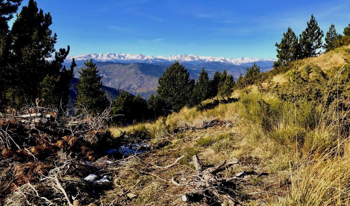 Vue sur le Massif du Carlit depuis le pic des Tres Estrellas Pyrenees rando facile