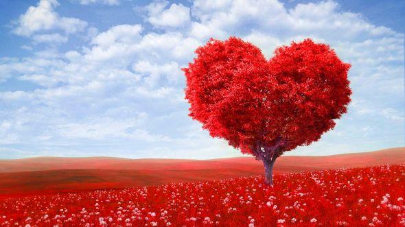 Offre Nuit Romantique en maison d'hotes de charme