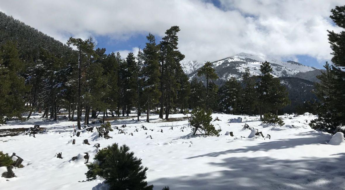 Départ randonnée Col de Creu - Estanyols raquette balisé facile capcir madres