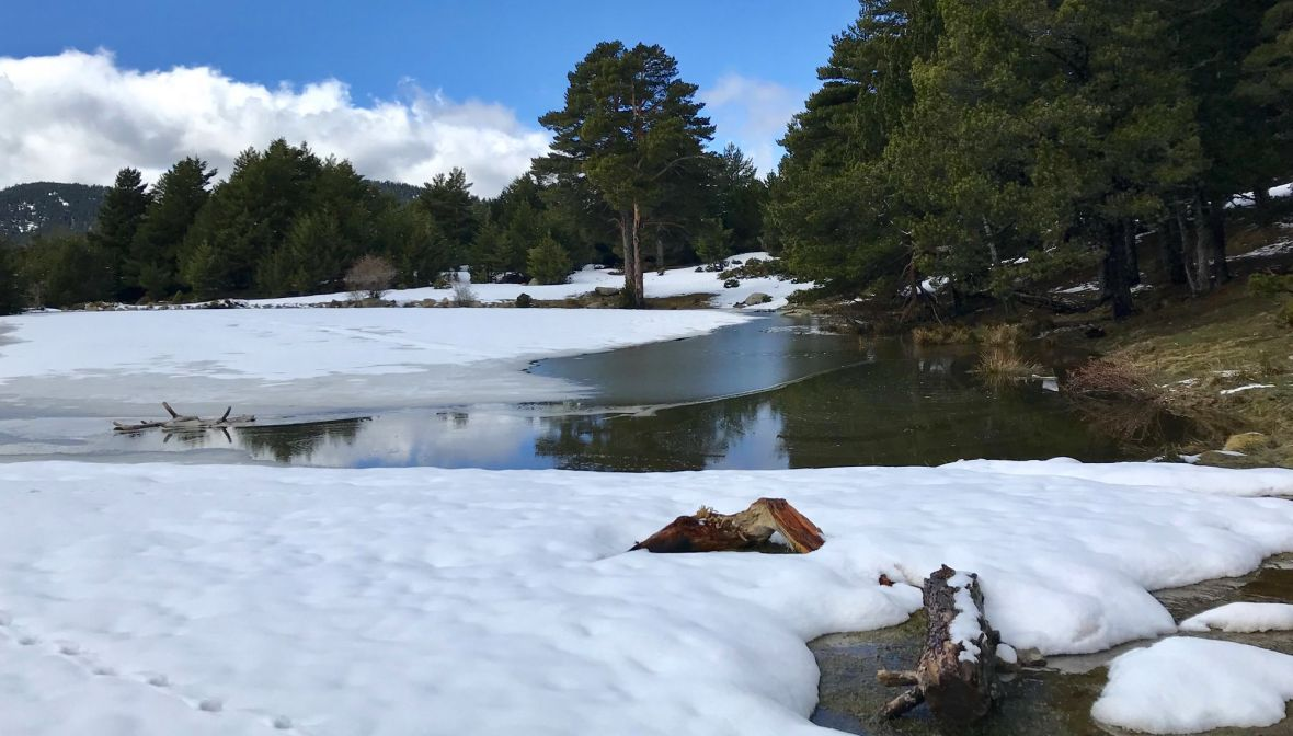lac pyrenees estanyols