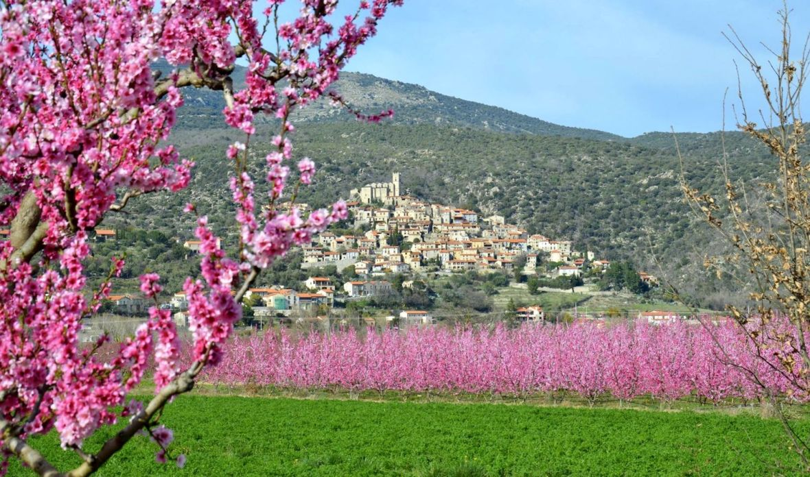 location gite plus beau villages de france pecher en fleur printemps