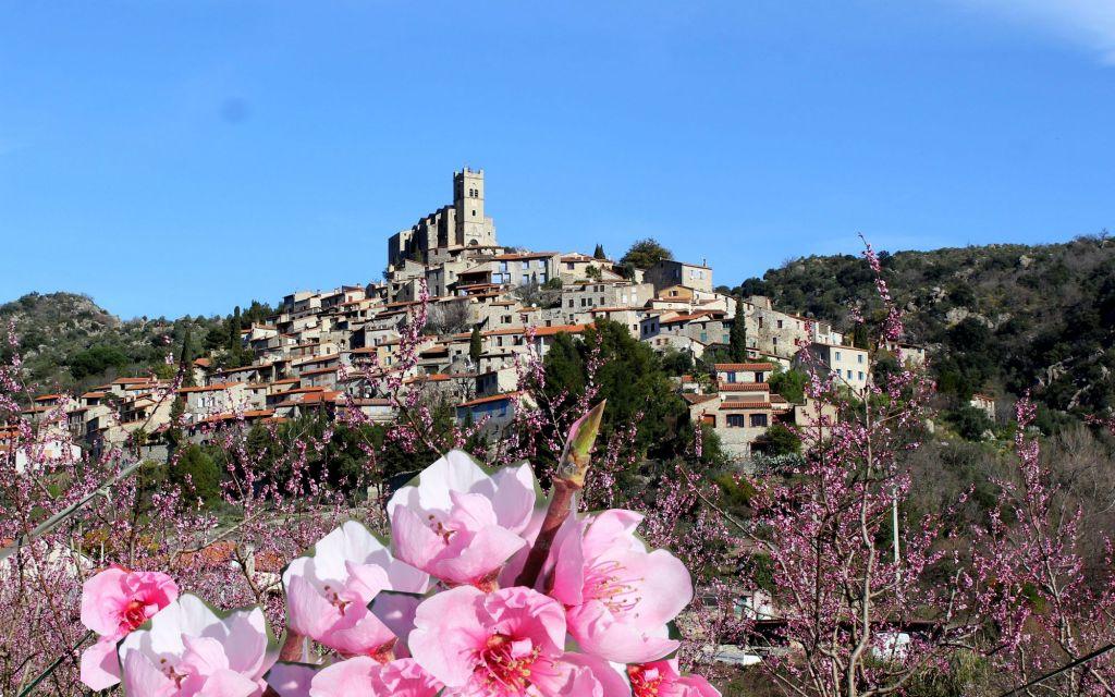 vallée de pêchers en fleur village perché eus 66