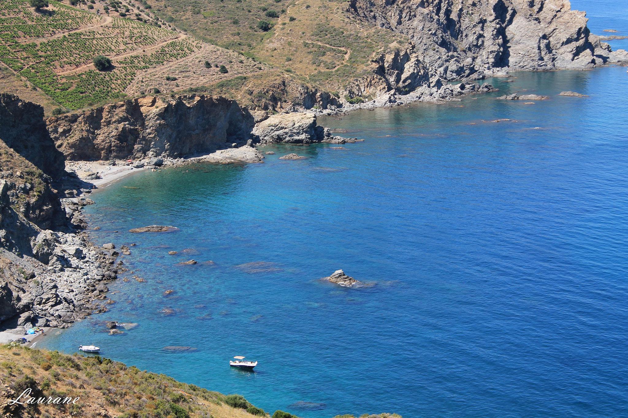 criques sauvages naturelle reserve marine sentier marin