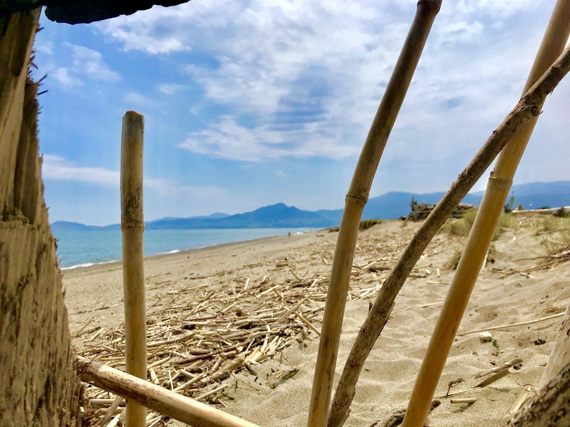 cabane en bois flotté du tech bocal plage naturiste libertine argeles