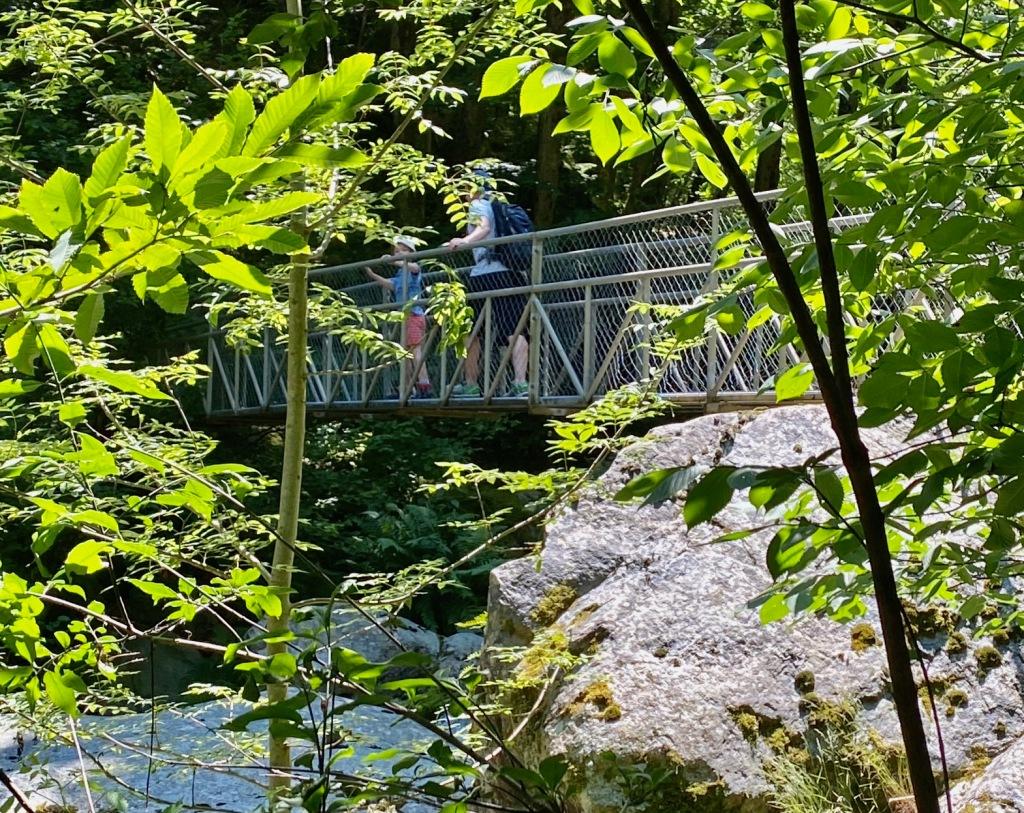 sentier pont de singe passerelles cady canigou