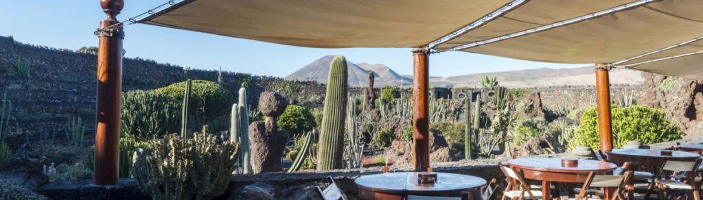 jardin de cactus de lanzarote canaries