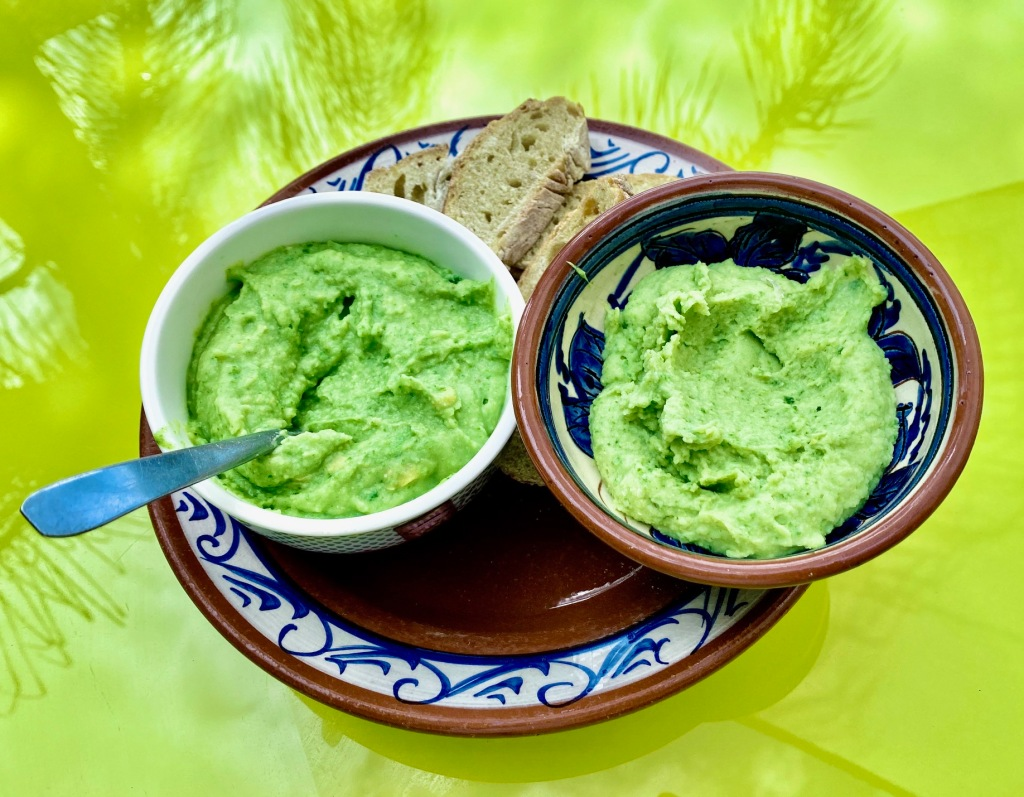guacamole, recette de guacamole sans avocat cactus nopal