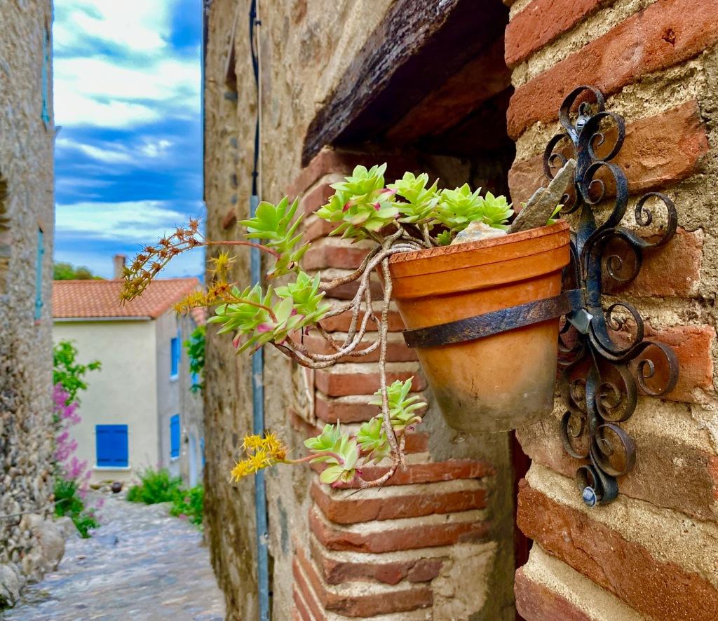 ruelle vegetalisee village sud